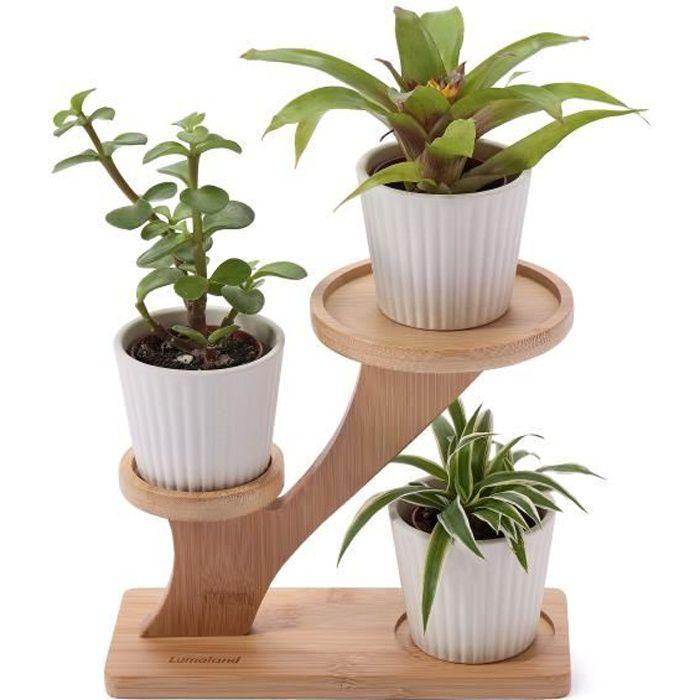 Étagère en bambou pour plantes Porte-plantes pour l'appartement et l'extérieur - Jardinière 20 x 15 x 16,5/7 cm Coloris nature
