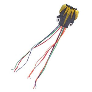 CERF-VOLANT Longue Software Tail Colorful Made Octopus Kite Av