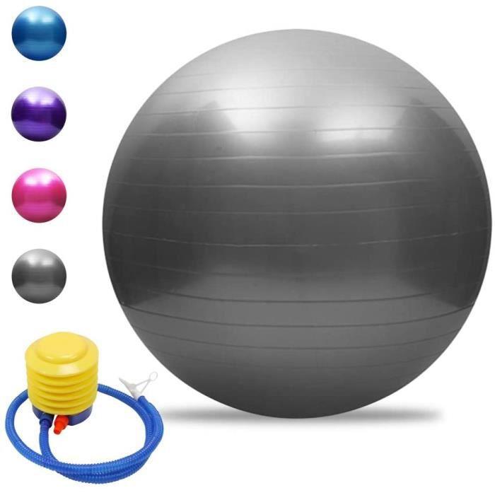 Balle de yoga Balle d'équilibre Pilates Barre de gymnastique physique Balle d'exercice physique 55 cm Argenté