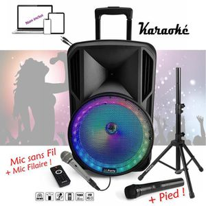 PACK SONO ENCEINTE PORTABLE 700W + BATTERIE + USB SD MP3 + M