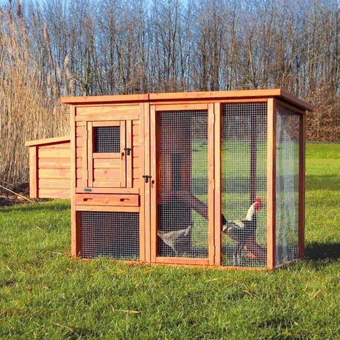 TRIXIE Natura Poulailler pour poules 170×105×77cm