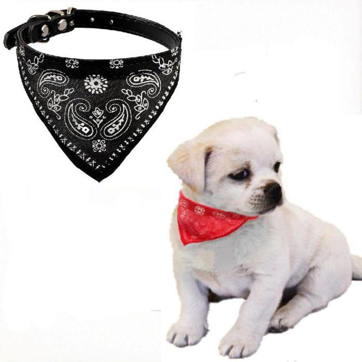 collier pour chien avec foulard