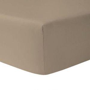 DRAP HOUSSE Drap Housse 160 x 200 - TAUPE CLAIR 100% coton 57