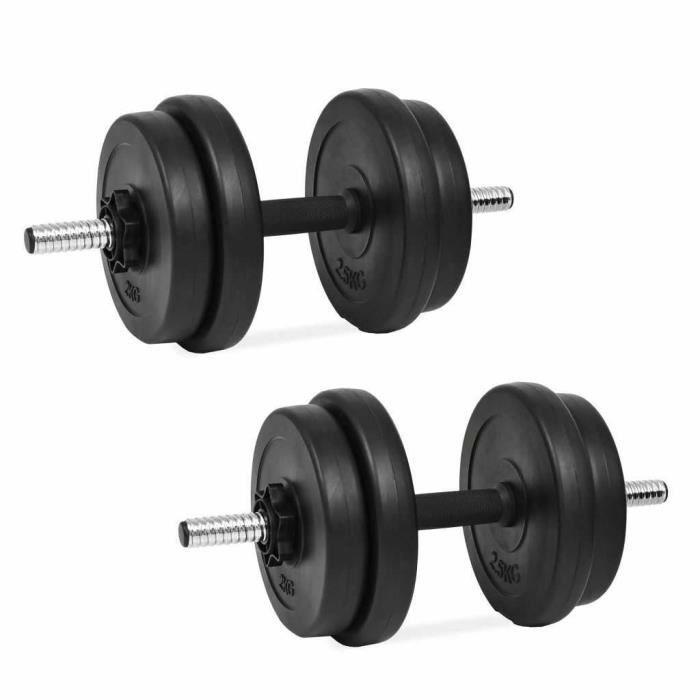 vidaXL Haltères Poids Barres Disques Fitness Musculation Biceps Multi Modèle (2 x 10 kg)