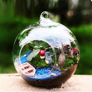 VASE - SOLIFLORE Transparent Boule Globe Forme Effacer Suspendus Va