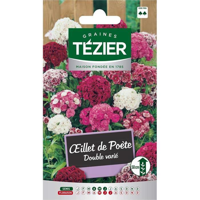 Sachet Graines - Tezier - Oeillet de poète double varié -- Fleurs bisannuelles - Sachet Fleurs - Fleurs bisannuelles à utiliser sur