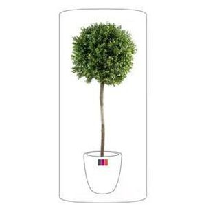 Buis artificiel 50 cm achat vente buis artificiel 50 for Plantes artificielles soldes
