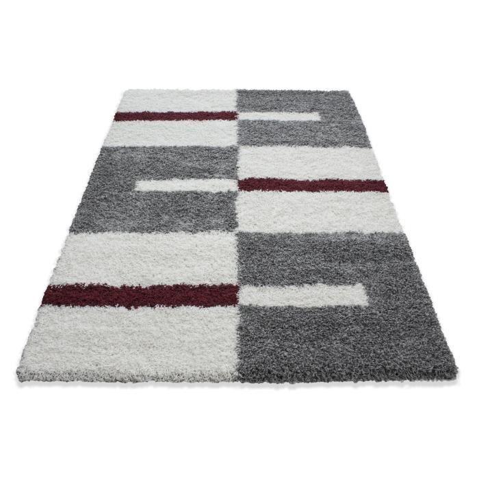 Fibres longues Hirsute Salon Shaggy Tapis de Parement 3cm Gris-Blanc-Rouge (240x340 cm)