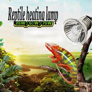 ÉCLAIRAGE TEMPSA Animal Lampe Ampoule Chauffante Reptile Tor