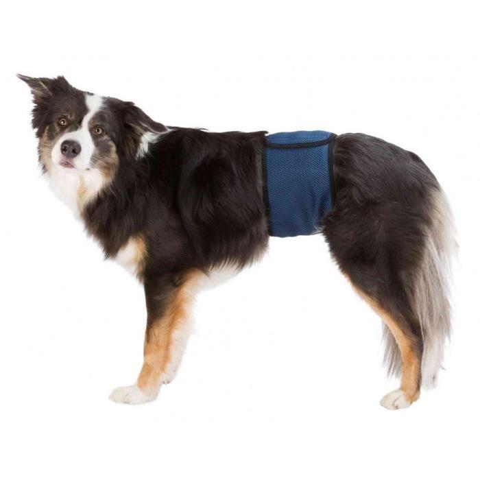 Bande ventrale pour chiens mâles - S-M: 37-45 cm, bleu foncé
