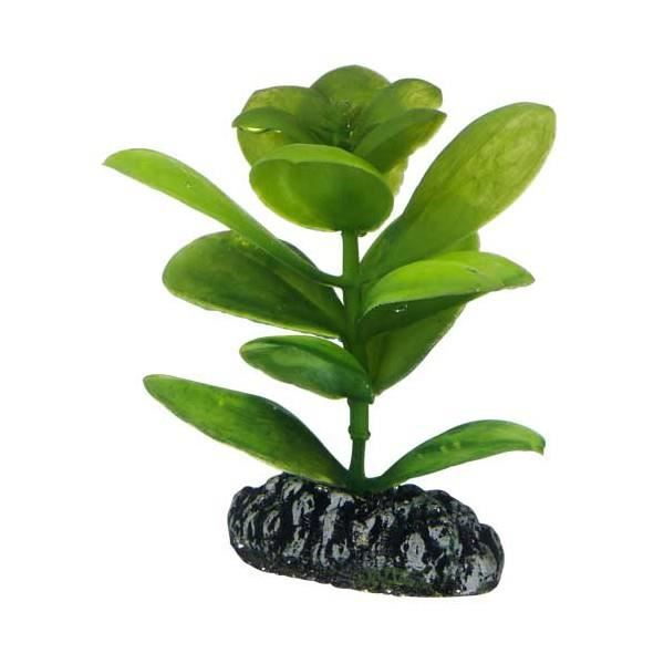 Plante artificielle saururus 7cm achat vente d co for Plantes artificielles soldes