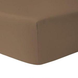 DRAP HOUSSE Drap Housse 160 x 200 - TAUPE FONCE 100% coton 57