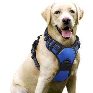 HARNAIS ANIMAL Harnais Chien - Gilet pour chien- Bleu taille M --
