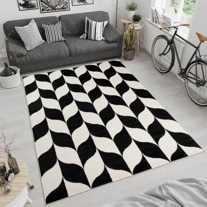 Tapiso Area Rugs Salon Chambre à coucher marocaine design doux Zig-Zag Motif Tapis