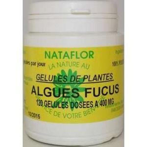 DIGESTION - TRANSIT  GELULES FUCUS vésiculeux (Varech) 400 mg. - Com...