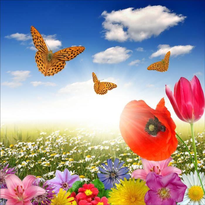 Stickers muraux déco : champ de fleurs papillons Dimensions ...
