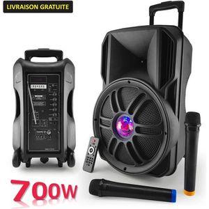 ENCEINTE ET RETOUR Enceinte sono batterie 12'' 700W - Effet Friztal L