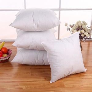 COUSSIN Coussin oreiller standard oreiller intérieur Decor