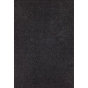 tapis shaggy 200 290 achat vente tapis shaggy 200 290. Black Bedroom Furniture Sets. Home Design Ideas