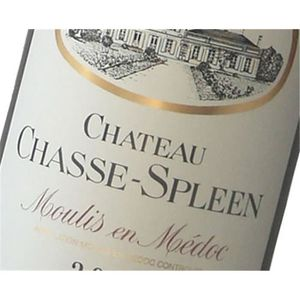 VIN ROUGE Magnum Château Chasse Spleen - Moulis 2016 3 x Mag