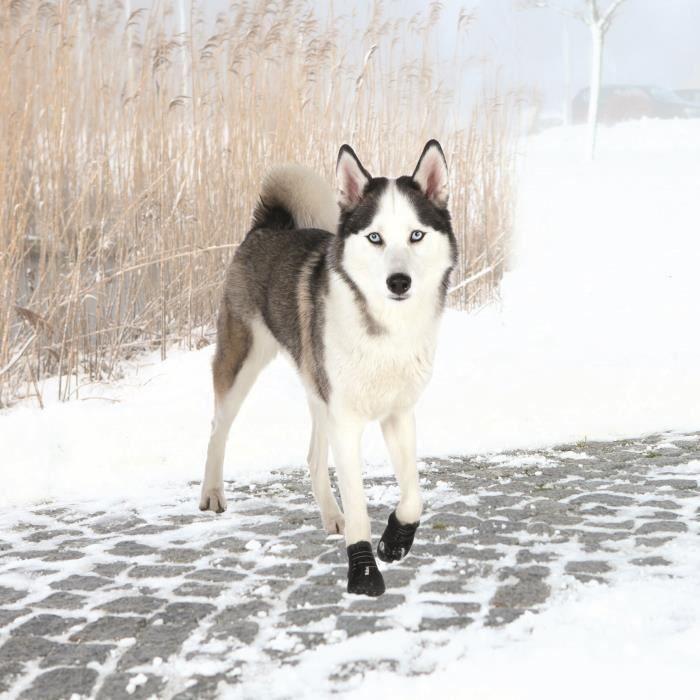 TRIXIE Bottes de protection Walker Active 2 pièces M-L - Noir - Pour chien