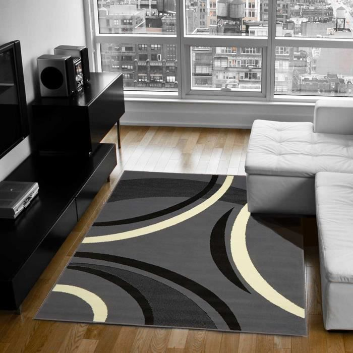 Tapis moderne pour salon platino gris 160x230 par dezenco for Tapis decoratif pour salon