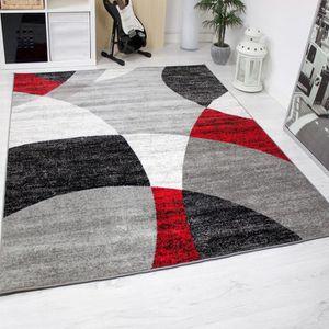 TAPIS Tapis pour le salon - Gris, blanc, noir et rouge -