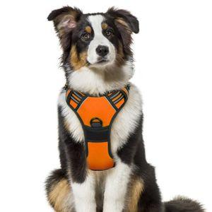 HARNAIS ANIMAL Gilet pour chien/Harnais Chien- Orange  taille M -