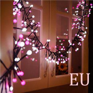 ÉCLAIRAGE INTÉRIEUR ECLAIRAGE INTERIEUR Double couleur LED String Ligh