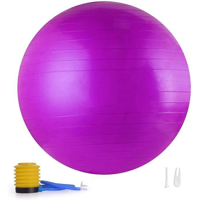 65cm Ballon de Gymnastique,Anti-éclatement,Boule d'assise,Balle de Yoga,Balles d'exercices Fitness,500kg,avec Pompe à air,violet