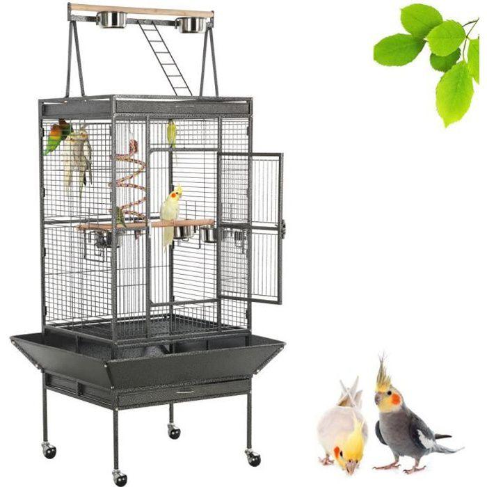 Cages jeu perroquet