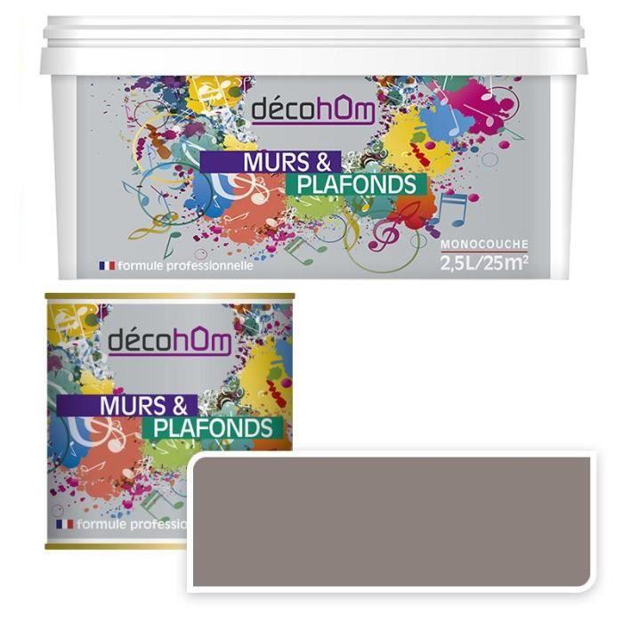 Peinture Murale Monocouche Couleur Taupe 10 Litres Mat