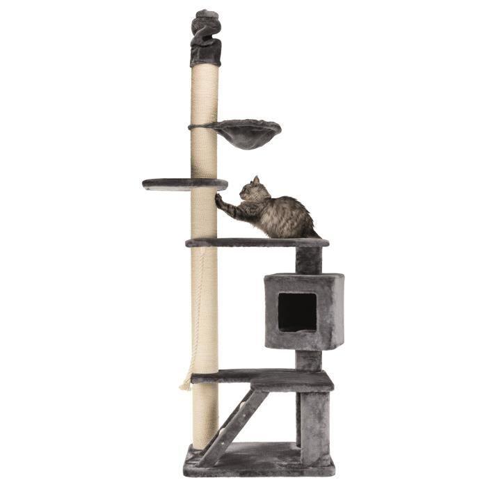 Arbre à chat XXL Tizian, du sol au plafond, 220-240 cm - Gris