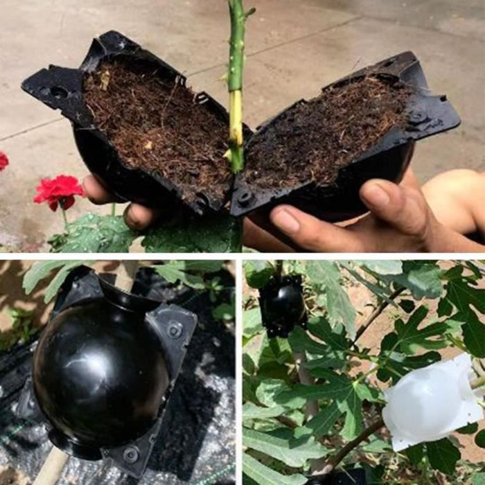 Boule de culture pour plante, 5 pièces, pour racines, pour jardin, 8cm de diamètre, 5 pièces