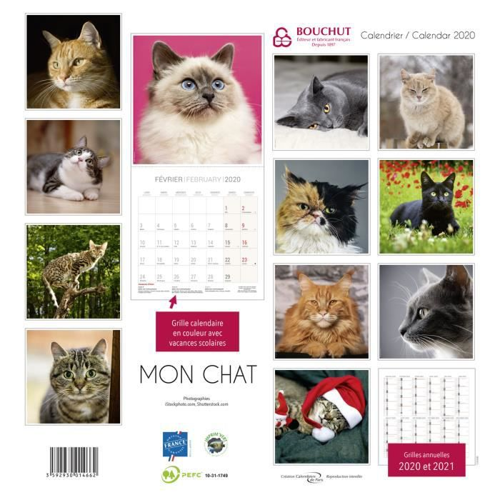 Calendrier 2020 Chat