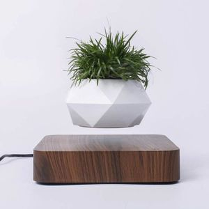 En plastique Kofun Plateau deau 370# Soucoupes Pot de fleurs Soucoupe de plantes Accessoire int/érieur et ext/érieur