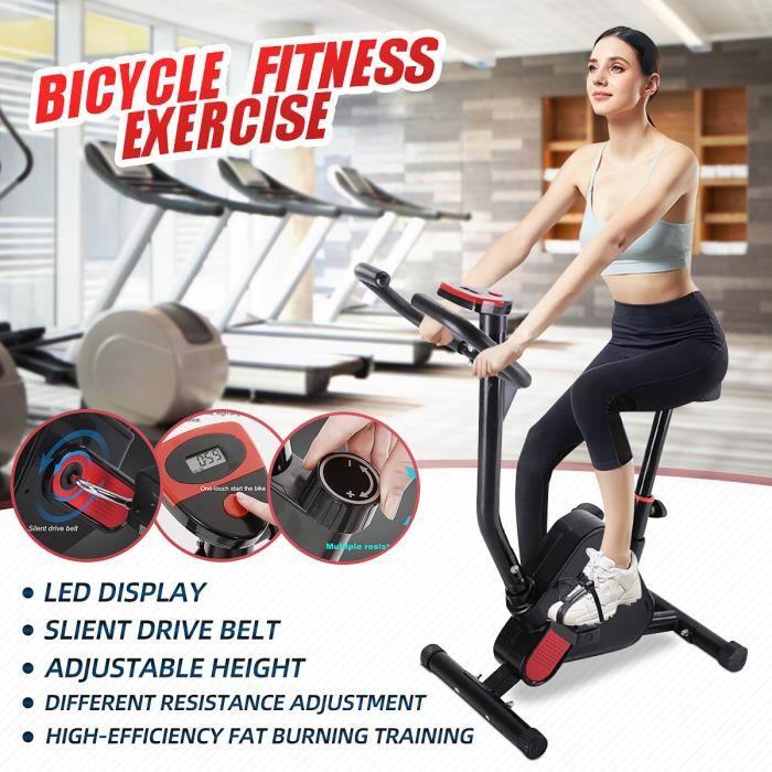 Vélo d'appartement Bras Jambes Ecran LED Musculation Entrainement Fitness Charge MAX 120KG