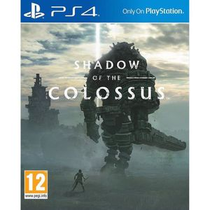 JEU PS4 Shadow of the Colossus PS4+ 1 Porte clé+2 led skin