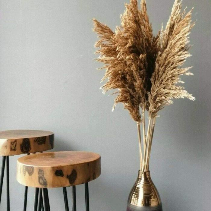 VASE - SOLIFLORE 10 x herbes de pampa naturelles s&eacutech&eacutees pour d&eacutecoration d'int&eacuterieur - 100 cm1255