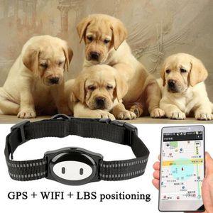 TRACAGE GPS GPS traceur animaux étanche pour collier pour chie