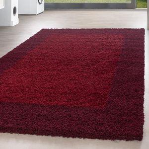 TAPIS Shaggy Shaggy Carpet Carpet frontière modèle salon