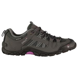 Chaussures Marche Salomon Quest 4D 2 GTX Brun Mixtes