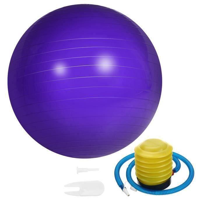 Ballon de Yoga 65cm Fitness Sport Exercice + Pompe Violet