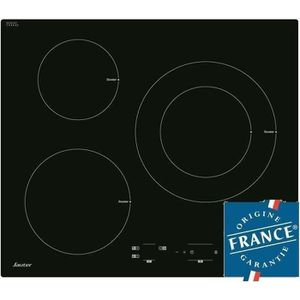 SAUTER SPI4300B Table de cuisson Induction - 3 zones - 7200W - L60 x P52cm - Rev?tement verre - Noir