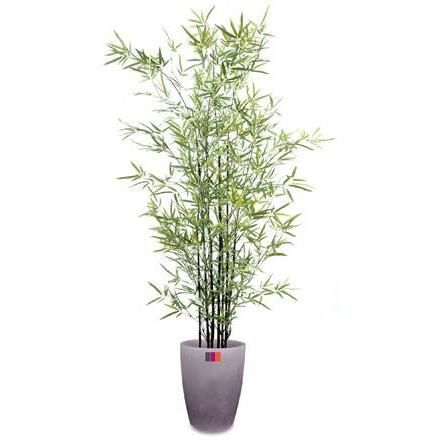 Plante artificielle semi naturelle bambou mini black for Plantes artificielles soldes
