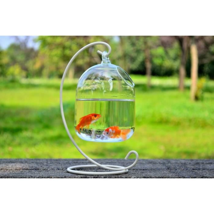 Aquarium bocal poisson en verre suspension bulle for Bocal de poisson