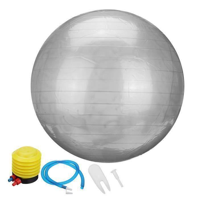 Ballon de Yoga 55cm Fitness Sport Exercice + Pompe Argent