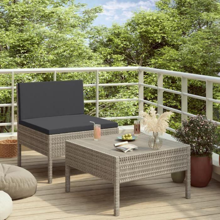 Lot de 2 Mobilier de jardin Meuble de jardin - Salon Bas De Jardin avec coussins Résine tressée Gris Excellent @239099