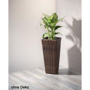 JARDINIÈRE - BAC A FLEUR Weles GMBH Gartenfreude 4000-1000-041 Pot de Fleur
