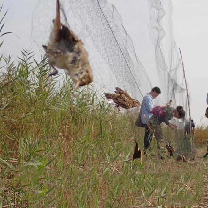 Filet Anti-oiseau, piège à oiseaux, filets de pêche pour étang, protection des cultures, arbre à fruits, légumes, [0A01E36]